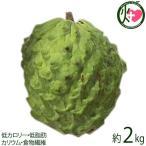 訳あり 期間限定・数量限定 アテモヤ (アフリカン プライド) 約2kg (4〜8個) 条件付き送料無料 超稀少 沖縄 フルーツ