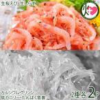 駿河湾産 ぷりぷり 桜えび 40g×2 駿河湾産 ぷりぷり 生しらす 150g×2 おいしい産業 -40℃急速冷凍 しらすはカルシウム エビはビタミンE豊富 条件付き送料無料