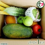 美ら島野菜果物お任せセット 果物メインL 条件付き送料無料 新鮮