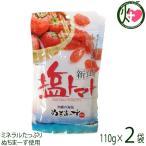 塩トマト 120g×2P 送料無料 夏バテ・熱中症対策に リコピン 1000円ポッキリ