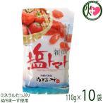 塩トマト 120g×10P 送料無料 夏バテ・熱中症対策に リコピン
