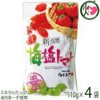 梅塩トマト 120g×4P 送料無料 夏バテ・熱中症対策に リコピン
