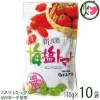 梅塩トマト 120g×10P 送料無料 夏バテ・熱中症対策に リコピン