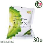 沖縄県産ゴーヤチップス 25g×30袋 送料無料 野菜不足の方に