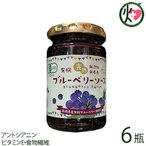 有機ブルーベリーソース 150g×6瓶 パナベリーファーム 島根県 完熟ブルーベリー使用 スーパーフード アントシアニン ビタミンE 食物繊維 送料無料