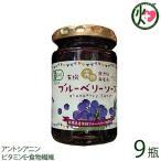 有機ブルーベリーソース 150g×9瓶 パナベリーファーム 島根県 完熟ブルーベリー使用 スーパーフード アントシアニン ビタミンE 食物繊維 送料無料