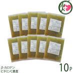 単細胞化ゴーヤーエキス 100g×10P 琉球エコプロジェクト 種も丸ごと沖縄産ゴーヤー 野菜 冷凍 お取り寄せ β-カロテン ビタミンC豊富 条件付き送料無料