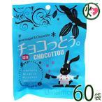 チョコっとう。 塩味 40g×60袋 琉球黒糖 沖縄イチオシ 土産人気 チョコレート 黒糖 沖縄の塩使用 菓子  送料無料