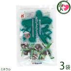 ミントこくとう 130g×3袋 琉球黒糖 沖縄 人気 定番 土産 黒糖 菓子 ミネラル 送料無料