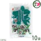 ミントこくとう 130g×10袋 琉球黒糖 沖縄 人気 定番 土産 黒糖 菓子 ミネラル 送料無料