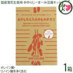 国産落花生使用 おうちでつくる「じーまーみ豆腐」セット×1箱 琉球うりずん物産 沖縄 土産 手作りキット オレイン酸・リノイン酸を多く含む 送料無料