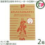 国産落花生使用 おうちでつくる「じーまーみ豆腐」セット×2箱 琉球うりずん物産 沖縄 土産 手作りキット オレイン酸・リノイン酸を多く含む 送料無料