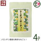 シークヮーサーティ (3g×20P)×4P 渡具知農園 沖縄 土産 人気 シークワーサー茶 ノビレチン ティーバッグタイプ 果皮丸ごとお茶にしました 送料無料