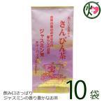 沖縄ジャスミン茶 ティーパック 3g×10P×10袋 沖縄土産 沖縄 土産 さんぴん茶 おすすめ  送料無料