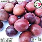 トロピカルフルーツの代表 沖縄県産パッションフルーツ 1kg  条件付き送料無料