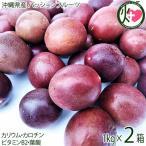 トロピカルフルーツの代表 沖縄県産パッションフルーツ 1kg×2箱  条件付き送料無料