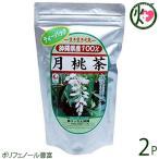 月桃茶 ティーパック(3g×25包入)×2袋 送料無料 健康茶