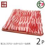 沖縄県産ブランド肉 でいご豚 バラ しゃぶしゃぶ 500g ×2P 上原ミート 淡いピンクの肉色 甘みとコクがありアクの出にくい豚肉 送料無料