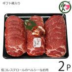ギフト 沖縄県産ブランド肉 でいご豚 肩ロース しゃぶしゃぶ 500g ×2P 上原ミート 淡いピンクの肉色 甘みとコクがありアクの出にくい豚肉 送料無料