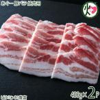 ギフト あぐー 豚バラ 焼肉 400g×2P JAおきなわ 上原ミート ビタミンB1(アミノ酸) 低コレステロール ご自宅用 贈答用 送料無料