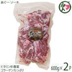 ギフト あぐー ソーキ 600g×2袋 JAおきなわ 上原ミート 沖縄 人気 希少 肉 骨付あばら肉(スペアリブ)ビタミンB1豊富(アミノ酸) 送料無料