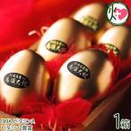ギフト 鳥骨鶏ゴールデンエッグ6個入り 烏骨鶏本舗 岐阜県 土産 人気 条件付き送料無料