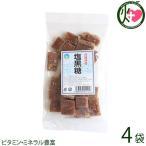 塩黒糖 (加工) 140g×4袋 わかまつどう製菓 沖縄 人気 土産 定番 お菓子  送料無料
