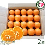 屋久島たんかん 贈答用 Mサイズ 5kg 約40玉×2箱 みかん フルーツ 果物 柑橘 新鮮 ギフト  条件付き送料無料