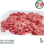 鹿肉 ミンチ 500g×1P 泰阜村ジビエ加工組合 長野県 土産 南信州産 シカ肉 天然国産鹿肉 高たんぱく・低脂肪 鉄分やDHAも含む 条件付き送料無料
