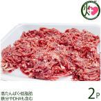 鹿肉 ミンチ 500g×2P 泰阜村ジビエ加工組合 長野県 土産 南信州産 シカ肉 天然国産鹿肉 高たんぱく・低脂肪 鉄分やDHAも含む 条件付き送料無料