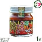 島ハバネロペースト 40g×1瓶 沖縄県産島ハバネロ100% 泡盛と島塩でペースト状に仕上げた超激辛スパイス  送料無料