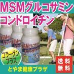 【送料無料】お得な3本セット♪フシブシに必要なグルコサミン、コンドロイチン、コラーゲンなどがたっぷり!MSM入グルコサミン