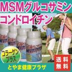 【送料無料】お得な4本セット♪フシブシに必要なグルコサミン、コンドロイチン、コラーゲンなどがたっぷり!MSM入グルコサミン