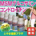 【送料無料】痛む節々へ…お得な5本セット!フシブシに必要なグルコサミン、コンドロイチン、コラーゲンなどがたっぷり!MSM入グルコサミン