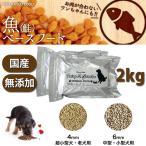 ドッグフード 犬 ごはん 犬用フード 無添加 国産 手作り 鮭ベース 魚ベースフード 2kg フェアリーSガーデン