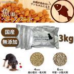 ドッグフード 犬 ごはん 犬用フード 無添加 国産 手作り 鮭ベース 魚ベースフード 3kg フェアリーSガーデン