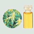 ショッピングメリッサ メリッサ(レモンバーム) エッセンシャルオイル 生活の木