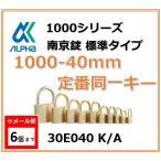 ALPHA евеые╒еб╞ю╡■╛√ 1000-40mm ─ъ╚╓╞▒░ьенб╝TO No.30E040б╩┬ч║хе╩еєе╨б╝╞▒░ьенб╝б╦евеые╒еб╞ю╡■╛√╔╕╜ре┐еде╫1000е╖еъб╝е║