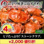 カニ かに 蟹 「ミソたっぷりストーンクラブ」4kg
