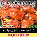 【夏のカニフェア】カニ かに 蟹   ミソたっぷり!「ストーンクラブ」5kg(総重量:5.5kg前後)