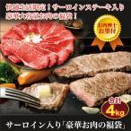 牛肉 お肉 お肉のプロ厳選 サーロイン入り「豪華お肉の福袋」4kg