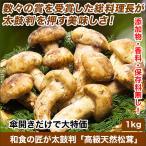 和食の匠が太鼓判「高級天然松茸」1kg
