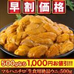 【早割価格】絶品 贅沢 海の幸 うに マルハニチロ「生食用絶品ウニ」500g