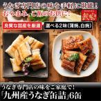 うなぎ専門店の味をご家庭で!「九州産うなぎ缶詰」6缶