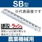 【昭和ブリッジ販売】SB型 アルミブリッジ ツメ  有効長3020x有効幅400 最大積載2.0t/2本セット [SB型-300-40-2.0]