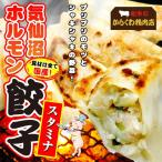 気仙沼ホルモン餃子セット-フライパンで手軽に焼ける8個入り2パック 具材は全て国産(からくわ精肉店)