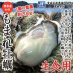 牡蠣 かき 唐桑産殻付き もまれ牡蠣10枚入 生食用 送料無料(宮城県漁業協同組合唐桑支所)