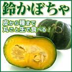 かぼちゃ 鈴かぼちゃ 1玉 生食用 北海道 滋賀 熊本 沖縄 など