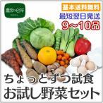 ちょっとずつ試食できる 農家の台所お試し野菜セット