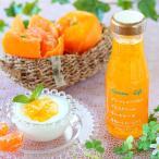 フルーツソース 柚子みかん225g ヨーグルトソース